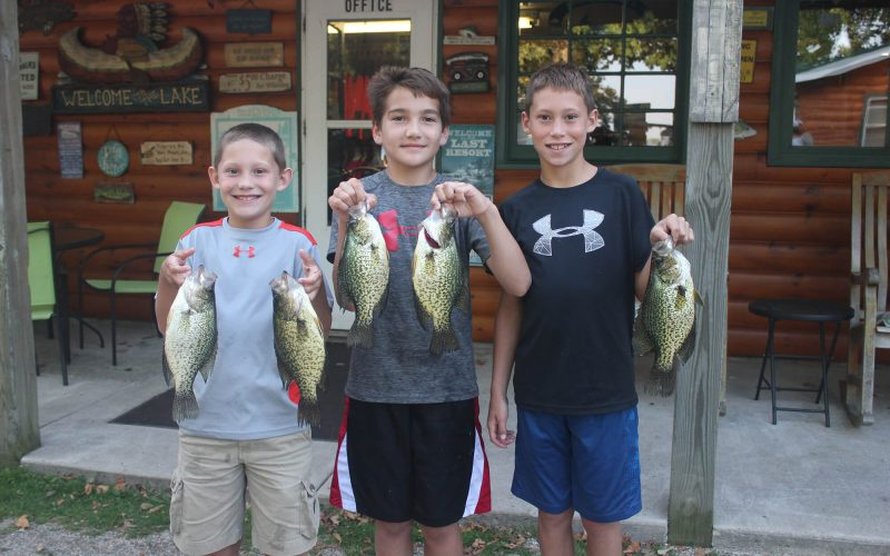 Buck point boys and fish
